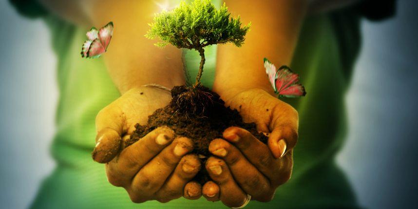 Empresa de Engenharia Contrata 20 Analistas Ambientais